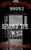 Beyond the Wall (Ash Manor Book 2)