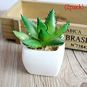 Fly Array Simulation Bonsai Mini view Simulation Flowers Artificial Plants Flowers Ornaments Fashion Simulation Plants Potted Plants Topiaries Home Decoration Green aloe vera(2 pack) 46