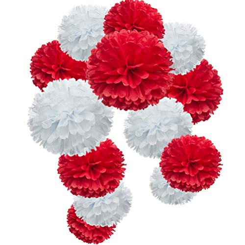 Red Paper Flower Tissue Pom Poms Party Supplies -