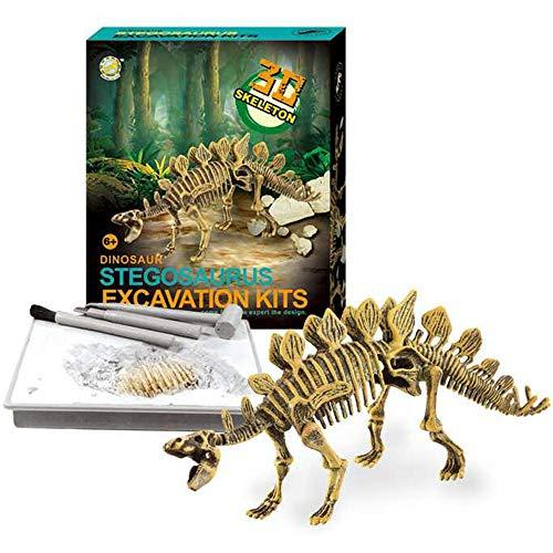(Dinosaur Skeleton 3D Dig a Dino Fossil Bones DIY Excavation Science Education Kit - Stegosaurus)