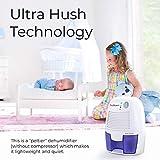 Pohl Schmitt Mini Dehumidifier, 17oz Water
