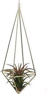 Tillandsia Air Plants Holder Freestanding Hanging Matte Golden Quadrilateral Pyramid Teardrop Shape Geometric Flowers Rack for Wedding Wall Decor 10 inch No Plants