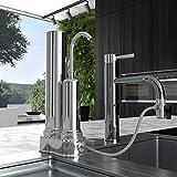 pH REGENERATE Faucet Water Filter - High pH