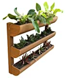 DC America City Garden CG-WP-360724-T Wall Planter, 3 Shelves