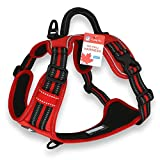 CUDDLY PET®, No Pull Dog Harness with Handle and Two Leash Attachments for Small Medium Large Dogs (Medium, Red)