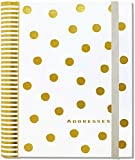 img - for Gold Dots Large Address Book book / textbook / text book