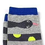 COTTON DAY Boys Fun Novelty Design Socks Bright
