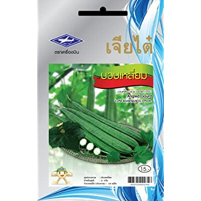Angled Gourd (18 Seeds) Seeds - 1 Package From Chai Tai, Thailand : Vegetable Plants : Garden & Outdoor