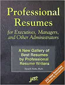resumes by professional resume writers david f noble 9781563704833