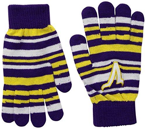 Minnesota Vikings Glove (FOCO Minnesota Vikings Stretch Glove)