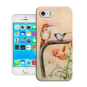 DIY ARTICLE?Bird flower painting 6Custom Unique Creative Art Pattern Cell Phone Case For iPhone5/5s