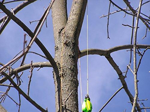 Thorium Multiuso Lanzar Bolso Arborista para podar el /árbol 340g 12oz 450g y 16oz Verde Lanzar Bolso