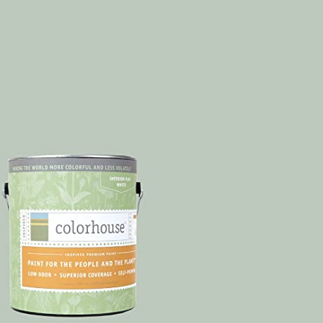 Inspired Flat Interior Paint, Water .02, Gallon