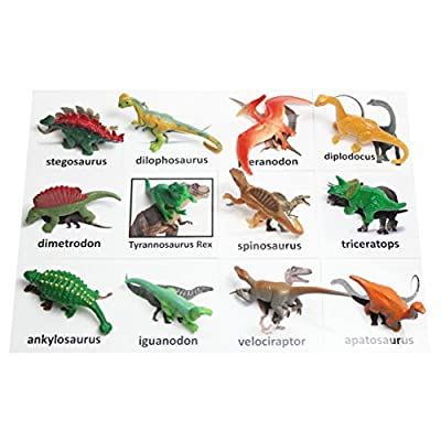 Curious Minds Busy Bags Montessori Dinosaur Figure Animal Match - Miniature Dino Figurines with Matching Cards - 2 Part Cards. Montessori Learning Toy, Language Materials: Toys & Games