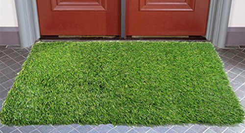 Handtex Home Artificial Grass Door Mat, 40x60cm (15.75x23.63-Inches)