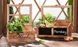 Indoor Herb Windowsill Planter Box Kitchen Garden to Grow Culinary Herbs like Basil Thyme cilantro Set of 2 Wooden Boxes
