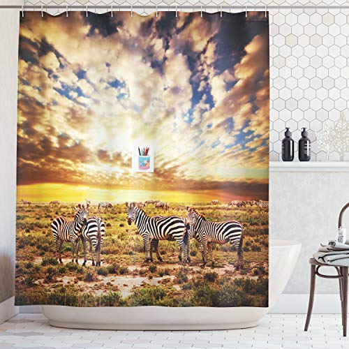 Ambesonne Safari Decor Collection, Dreamy Photo of Savannahs at Sunset with Zebras on the Grassland Dramatic Sky Wild Nature Deco, Polyester Fabric Bathroom Shower Curtain Set with Hooks, -