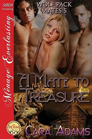 book cover of A Mate to Treasure