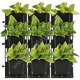 Trust Basket Set of 4-Vertical Gardening Panel (4 Frame + 12 Pots)
