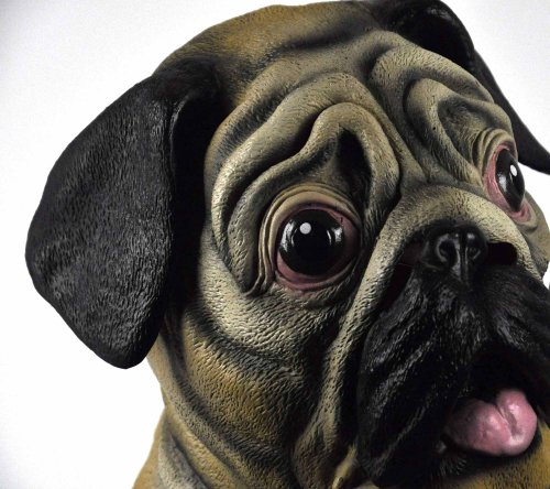 Accoutrements Pug Mask]()