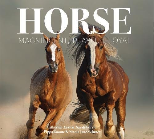 Horse magnificent playful loyal best kept secrets catherine horse magnificent playful loyal best kept secrets catherine austen sarah gorrie pippa roome nicola jane swinney 9781786645524 amazon books fandeluxe Gallery