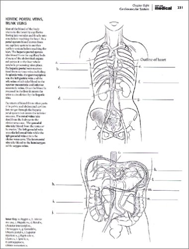 Kaplan Medical Coloring Book Answers | Coloring Pages
