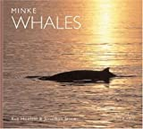Minke Whales, A. Rus Hoelzel and S. Jonathan Stern, 0896584909