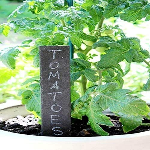 Set of 10 Natural Slate Garden Markers for Herbs Pots and Garden Reusable Slate Tags with Chalk HelpAccess Slate Plant Labels 10 Pieces Black 20 x 3 cm