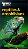 Reptiles and Amphibians, Discovery Books Staff, 1563318393