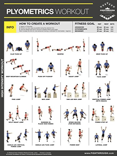 complete garage gym laminated poster set of 8 chart strength