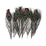 10 X 30cm Natural Peacock Feather House Decoration, My Pet Supplies