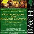 Edition Bachakademie Vol. 139 (Huldigungs- und Glückwunschkantaten)