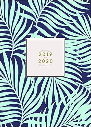 Agenda 2019 2020 Semainier: Agenda 18 mois journalier mi ...