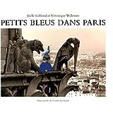 Petits bleus dans Paris