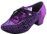 Abby AQ-900510 Womens Sexy Comfort Party Classical Low Heel Round-Toe Mesh Dance-Shoes Purple US Size9