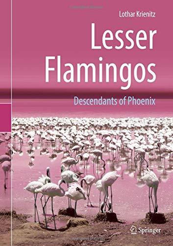 Lesser Flamingos: Descendants of Phoenix