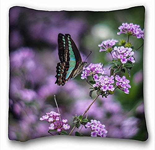 My Honey Pillow Pillow Cover Insect Butterfly Green Wings Purple Flowers Macro Blurring 18 In 18 Twin Sides