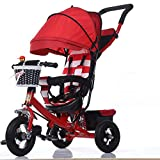 Strollers Baby Portable Child Tricycle Bike Trolley Stroller Removable to Wash Transformer Tricycle Pushchair Pram 8M~5Y (Color : B)