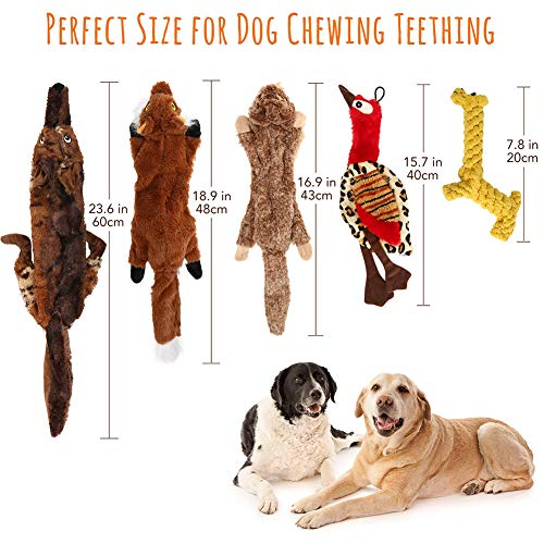 5PCS Dog Squeaky Toys No Stuffing Plush Crinkle Dog Toy for Small Dogs, Natural Cotton Giraffe Rope Toys for Puppy Teething, Includes Wolf, Squirrel, Giraffe, Bird, Marmot