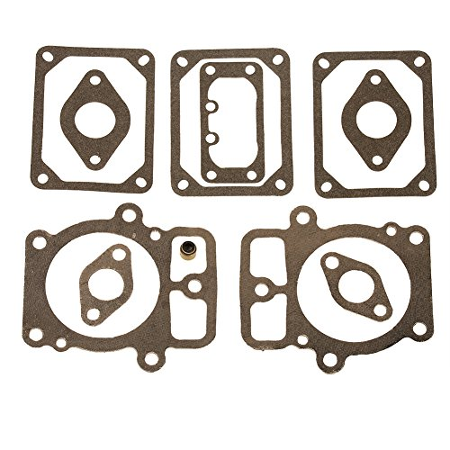 - HIFROM New Engine Valve Gasket Set Replacement for Briggs & Stratton Electrolux 694013 499890