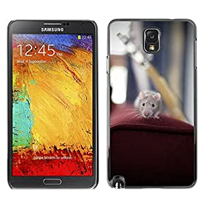 Super Stella Slim PC Hard Case Cover Skin Armor Shell Protection // M00149077 Mouse Rat Animal Pet Rodent Mammal // Samsung Galaxy Note 3 III N9000 N9002 N9005