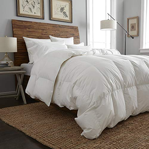 1 Piece King All Season Duvet Insert Hypoallergenic Reversible Eco Friendly Hungarian White Goose Down Comforter, Luxurious Ultra Soft Luxe Bedding, Tencel Natural Fabric Lightweight Silk Comforter