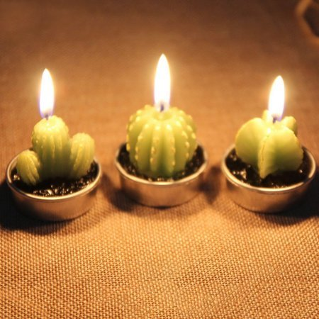 OKSLO Girl12Queen 12 Pcs Simulation Plant Cactus Grapes Candle Mini Home Decor Table T