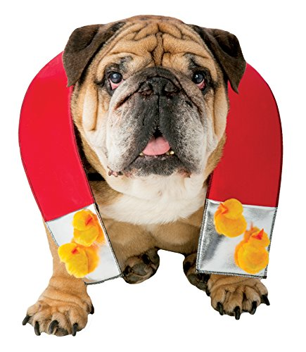 Zelda Chick Magnet Dog Outfit Funny Theme Halloween Pet Costume, XL/XXL ()