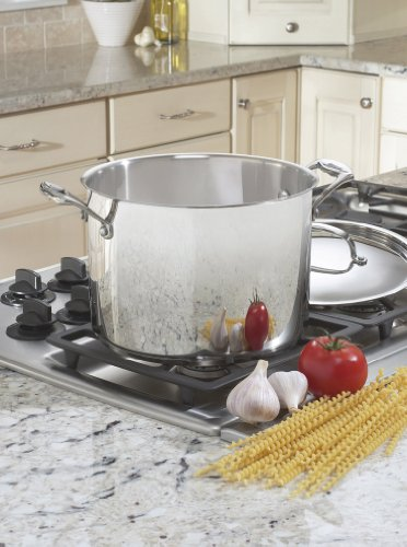 Cuisinart 766-24 Chef's Classic 8-Quart Stockpot with Cover by Cuisinart (Image #1)