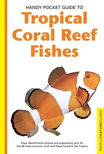 Handy Pocket Guide to Tropical Coral Reef Fishes (Handy Pocket Guides)