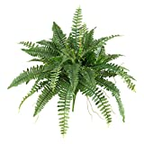 "Nearly Natural 6032-S2 40"" Boston Fern (Set of 2), 2 Piece"