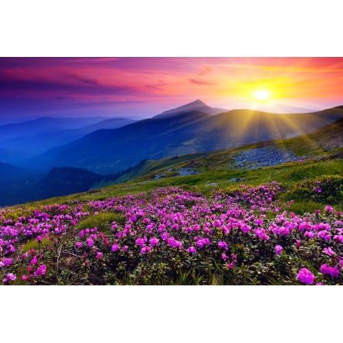 Beautiful Nature Image: Beautiful Posters: Amazon.com