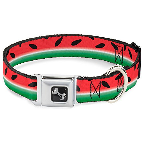 Watermelon Buckle - Dog Collar Seatbelt Buckle Watermelon Stripe Red Green Black 15 to 26 Inches 1.0 Inch Wide