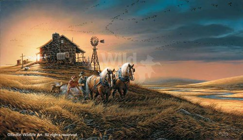 Wild Wings For Amber Waves of Grain by Terry Redlin Limited Edition Print of 29500 Signed & Numbered